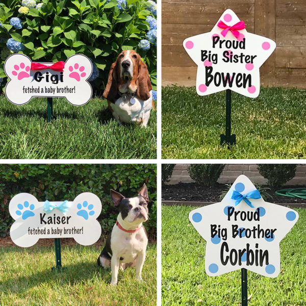 Dog Bone Sign and Star SIgns for Rent, Columbus, OH